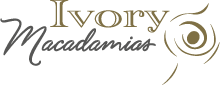 Ivory Macadamias